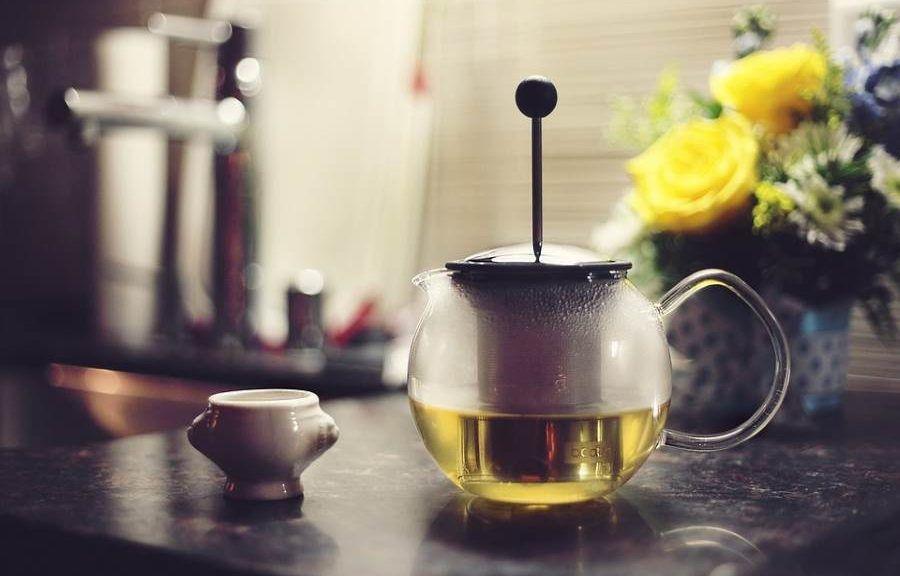 grüner tee und fettabbau