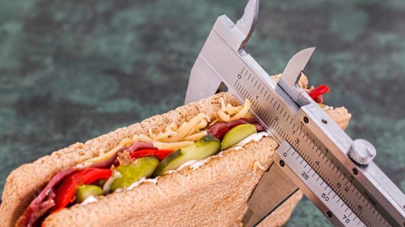 Artgerechte Ernährung gegen DGE