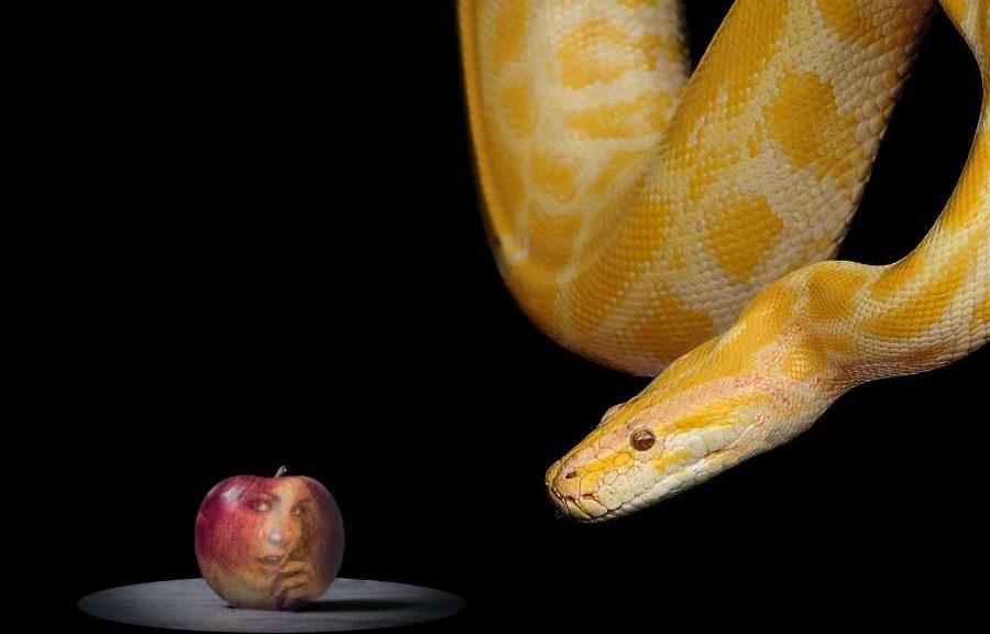 Adam und Eva die verbotene Frucht war nicht glutenfrei!