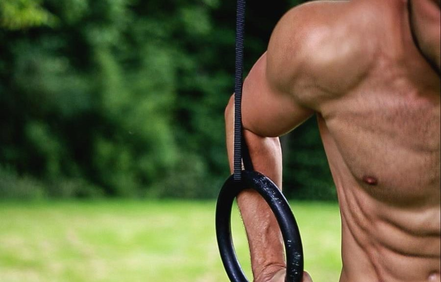Ring Dips Calisthenics